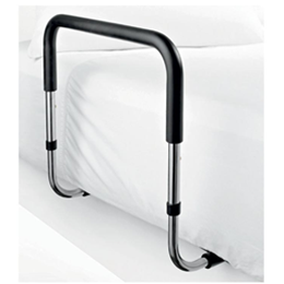 Bed Assist Rail - Image Number 728461